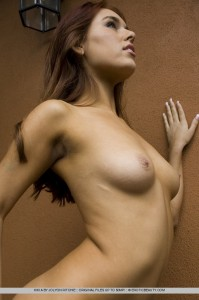The latest in art nude sites