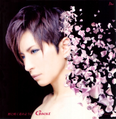 Gackt – No Ni Saku Hana No You Ni